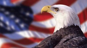 Bald Eagle and American Flag --- Image by © Ocean/Corbis