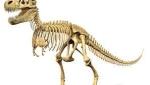 Dinosaur(2)